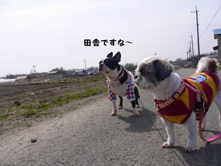 Makino3