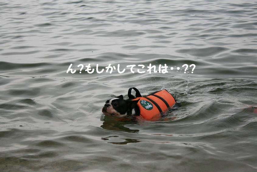 Of_14