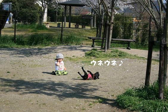 Img_3871