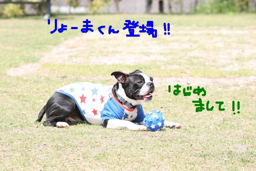 Ryomakun3
